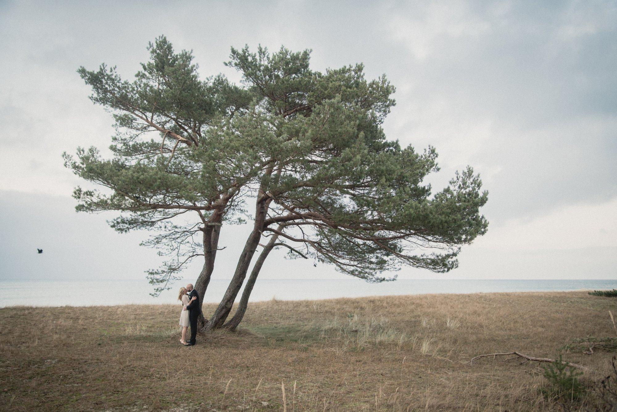 Hochzeitsfotografie In Prerow